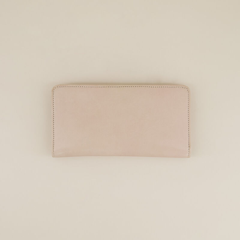 Aya Clean Clip Purse -  c21